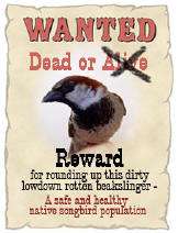 Reward poster for Sparrows