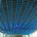New 44th Street skytrain tram station ceiling with 1655 openings that needed special bird proofing, took 2 1/2 months