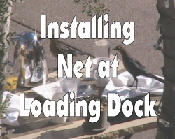 Old AzWnS- Loading Dock Net Video