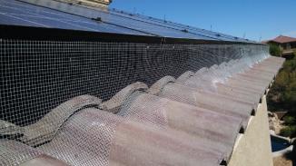 Solar Panel Pigeon Control Pigeon Problems Solar Panels